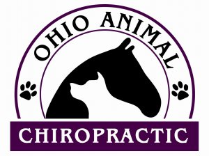 Ohio_Animal_Chiro_vistaprint_jpg